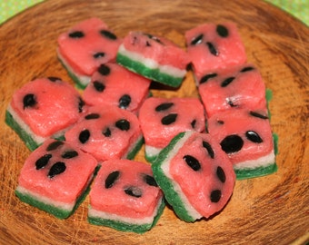 WILD WATERMELON Primitive Grubby Cake Bites Cube Wax Tarts Melts  Highly Scented