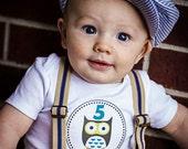 Baby Stickers Monthly, Boys Baby Bodysuit Stickers, Monthly Stickers, Baby Month Stickers, Monthly Bodysuit Stickers, Owls (B040)