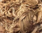 "Raw Gorgeous Suri Alpaca Fleece, Averaging 7"" locks, yearling fine"