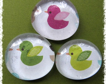 Glass Pebble Magnets -  Birds of Pink and Green Set of 3 -- Kitchen Magnets - Office Decor - Magnet