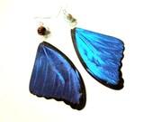 Blue Morpho Didius Butterfly Earrings, Real Butterfly Wing Earrings, Real Blue Butterfly Wing Earrings