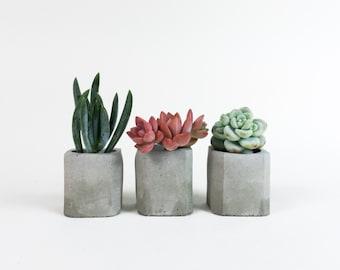 Mini Concrete Planter - Concrete Vessel - Concrete Plant Vase - Beveled Edge