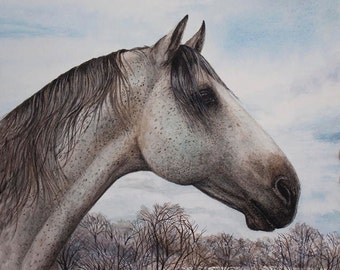 "New Limited Edition Print ""Silver Solitude"" by Cindy Alvarado"