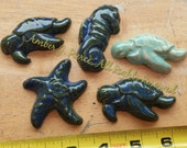 SEA TURTLES, Seahorse, and star fish tiles Mosaic or Jewelry