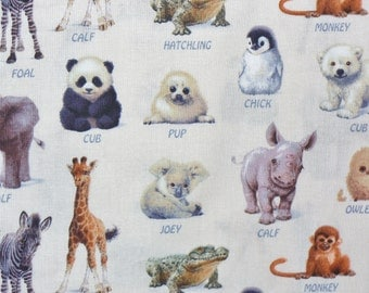 Animals Fabric,  Wild Baby Animals, Wild Baby Birds, Realistic, Baby Animals Names, Elizabeths Studio, By the Yard