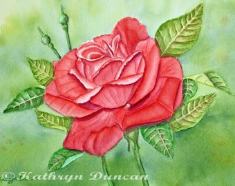 Rose Floral Original Watercolor Painting, Large Red Rose, matted to 16x20