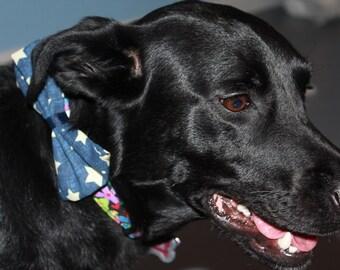 Stars Dog Bow/Bow Tie Accessory