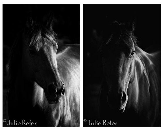 Cheval photographie noir et blanc cheval art - Cheval a imprimer noir et blanc ...