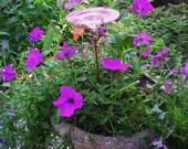 CONTAINER GARDENING, Butterfly Feeder, stained glass, PINK, copper, garden stake, Garden Art