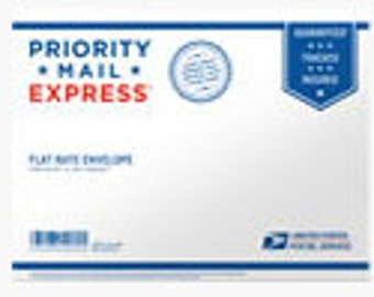 "PRIORITY MAIL EXPRESS Shipping Flat Rate in Padded Envelope 12.5"" x 9.5"""