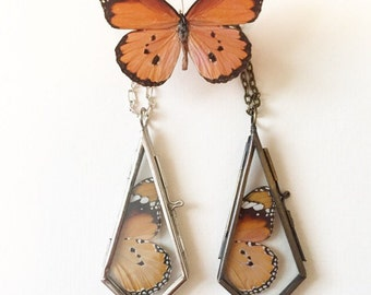 African monarch butterfly wing necklace