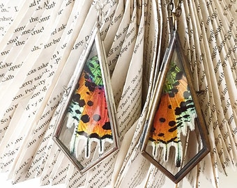 Sunset moth real butterfly wing necklace