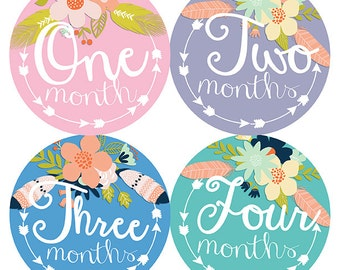 FREE GIFT, Baby Belly Stickers, Monthly Baby Stickers Girl, Month by Month Sticker, Arrows, Feather, Flower, Tribal, Pink, Purple, Teal Blue