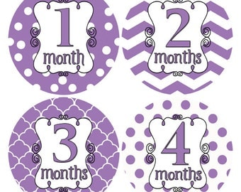 Shabby Chic Girl Monthly Stickers, Purple and White Monthly Baby Stickers, Baby Girl Stickers Milestone Sticker, Nursery Decor (315)