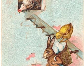 Vintage Easter Postcard, Rabbit Carrying Basket of Eggs, Chicks Loading from Ladder, 1908