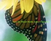 Butterfly Art, Flitered Light Photography Art, I Love Butterflies, Single Wing Butterfly, Home Decor Butterfly, Colorful Wall Art, Butterfly