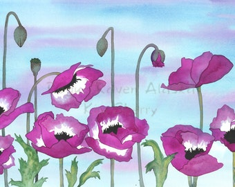 Blushing - Limited Edition Print of Purple and White Poppies with Calm, Blue Sky