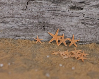 50 Tiny Starfish for Nautical Decor, Beach Wedding Decor or Crafts  - Beach Decor Starfish