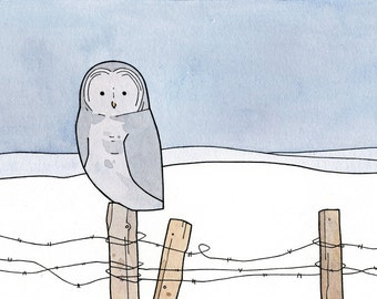 Great Gray Owl, Barbed Wire Fence watercolor and ink illustration