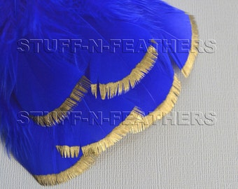 GOLD DIPPED cobalt blue feathers - metallic gold hand painted turkey feathers / 3-5 in (7.5-12.5 cm) long, 6 pieces/ F161-3G