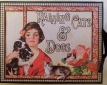 Raining Cats and Dogs Album - Graphic 45