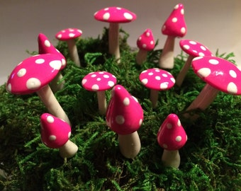 Fairy mushroom ring assorted sizes and shapes 13 pieces assorted colors available woodland garden gnome elf boy girl terrarium party favor
