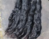 "Extra Long Black Suri Alpaca Locks ""Black Velvet"""