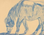 Original Drawing Pony Art on Paper by Niki Hilsabeck
