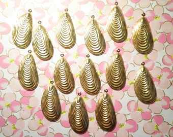 14 Brass 28mm Clam Shell Charms