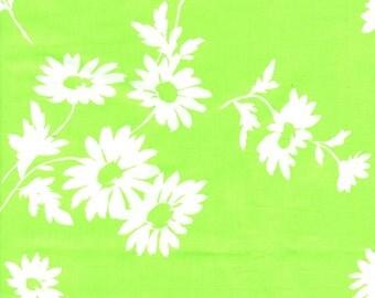 Shasta Daisy  (Col E) by Suzuko Koseki for Yuwa of Japan