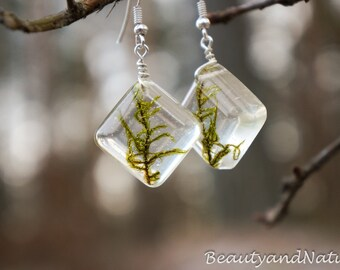 Real moss earrings in resin. Green moss earrings OOAK earrings. Droop earrings. Gift for her. Rustic weddding earrings. Botanical jewelry