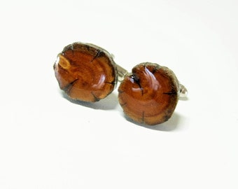 Ancient juniper wood cufflinks. Tree branch cufflinks.