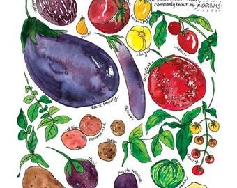 Solanum Eggplant & Tomato Art Print