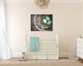 Robin's Nest - Original Fine Art Gallery Wrapped Canvas (nest, nature, bird, robin, aqua, eggs, bird's nest)