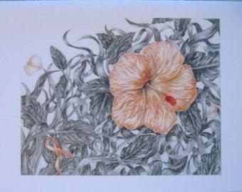Orange Flower Cards (Leukemia)