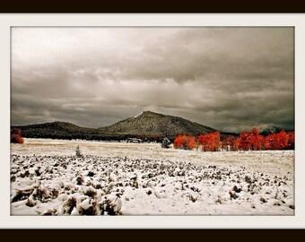 Grand Teton Photo, Digital Photography, Instant Download, Fall Digital Print, Digital Download, Landscape Photography, Fall Photography