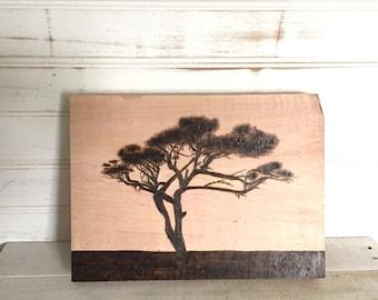 Wood Burn Acacia Tree