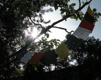 Tibetan prayer flags original handmade paper GLÜCKsgirlande