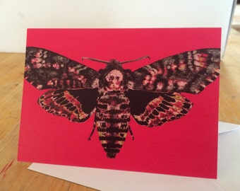 Moth art card