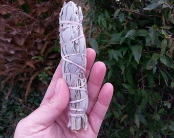 Small California White Sage (Salvia Apiana) Bundle approximately 4 inches, wild harvested, Reiki infused