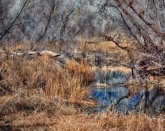 Creekway  -  High Dynamic Range Photographic Art Print