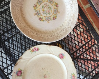 Pair of Vintage Antique China Plates With Floral Motif