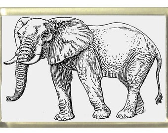 Elephant Fridge Magnet 7cm by 4.5cm,
