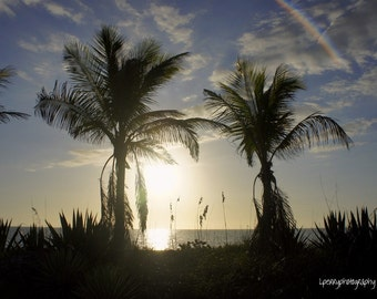 Captiva Island Photographic Print
