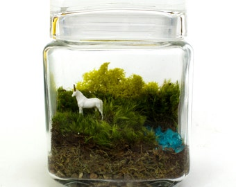 Moss Terrarium // Unicorn Spotting! // Medium
