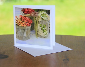 photo greetings cards,photographic cards,photo cards,mom card,birthday card,girlfriend card,wife card,flower,nature,wildlife
