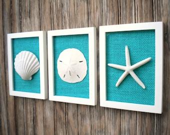 Sea shell wall art | Etsy