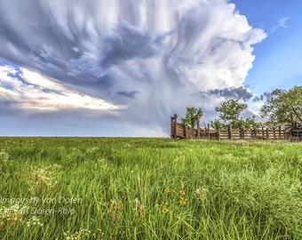 "Title: ""Kansas Summer""  Landscape photography - Fine Art Print"