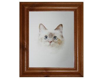 Cat Painting, Blue Eyed Kitten, 7x5,8x10  inch Cat Art Print, Archival Watercolour Paper,