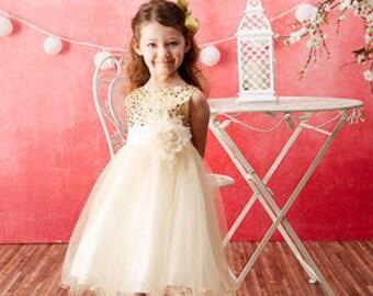Flower Girl  Gold Sequin Dress, Flower Girl Dress, special occasion dress, Girls gold  sequin dress, cominion dress (ets0155)